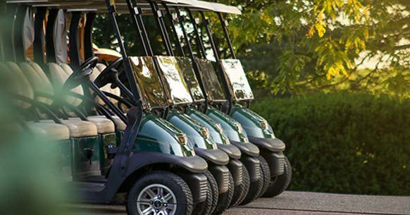 Golf Cart Rentals in Rising Sun